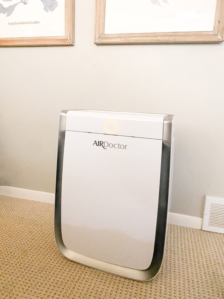 Personal Air Purifier agutsygirl.com #airpurifier #airfilter mold