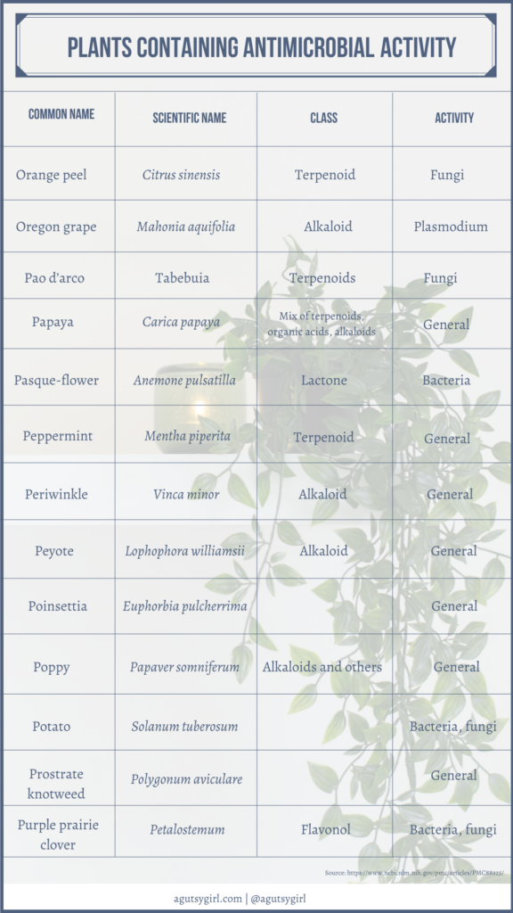 Plants containing antimicrobial activity agutsygirl.com NIH reference #plantmedicine #antimicrobial #guthealth