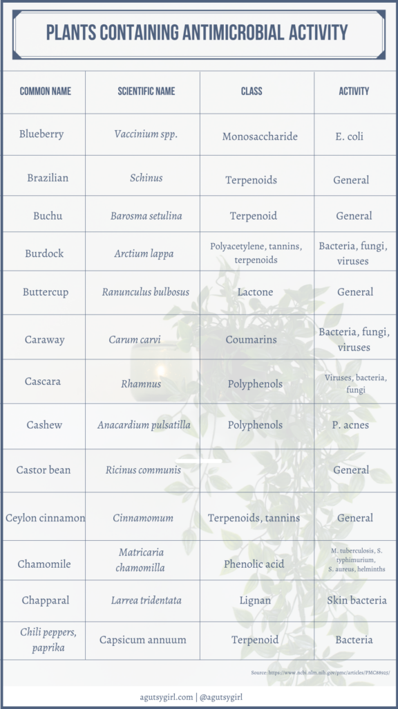 Plants containing antimicrobial activity agutsygirl.com NIH reference #plants #antimicrobial #gut