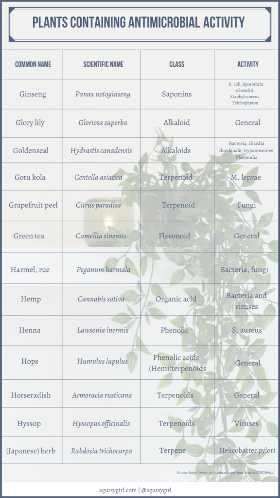 Plants containing antimicrobial activity agutsygirl.com NIH reference #plants #antimicrobial #guthealing
