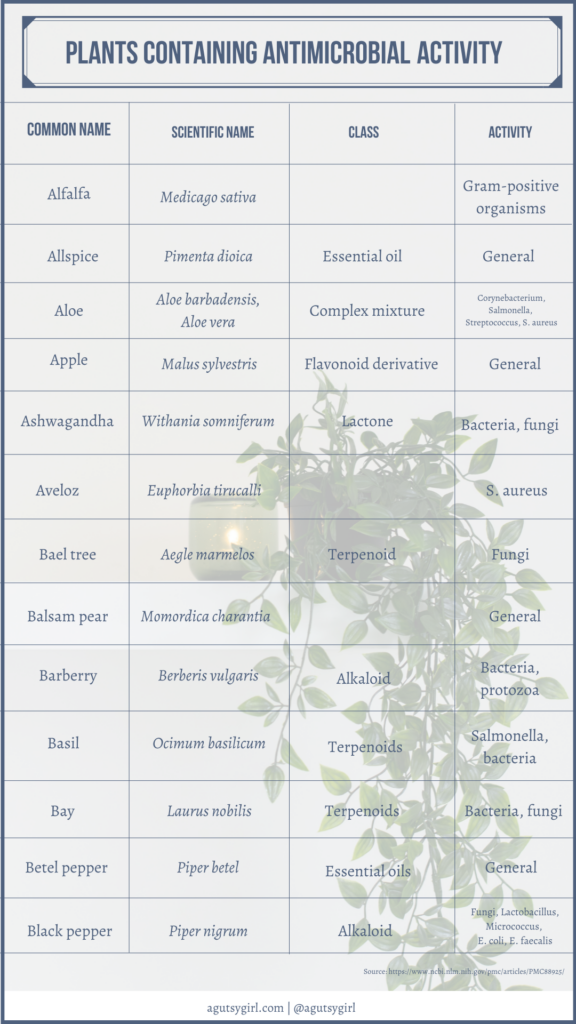 Plants containing antimicrobial activity agutsygirl.com NIH reference #plants #antimicrobial #guthealth