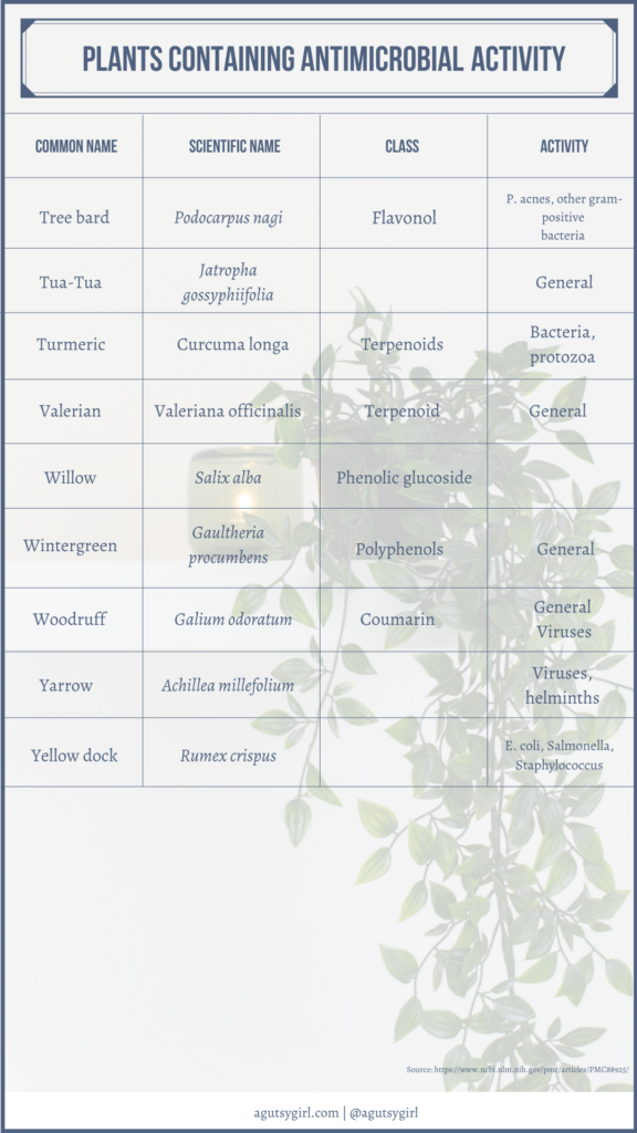 Plants containing antimicrobial activity agutsygirl.com NIH reference #plants #antimicrobial #guthealth #healing
