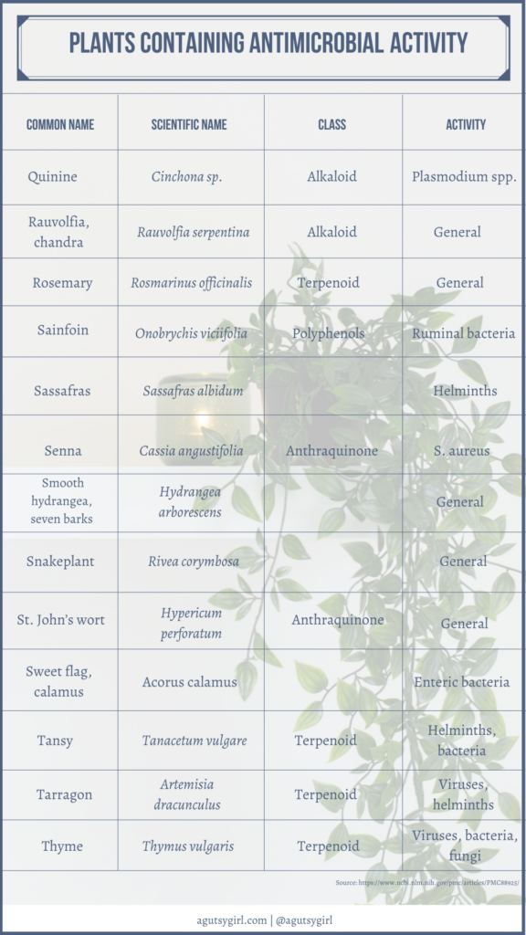 Plants containing antimicrobial activity agutsygirl.com NIH reference #plants #antimicrobial #guthealth #nih