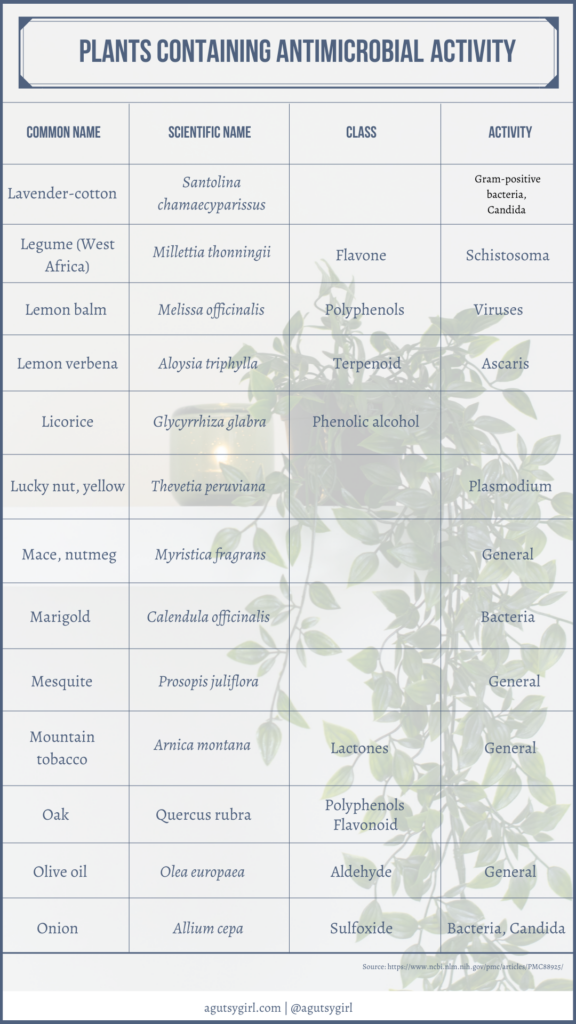 Plants containing antimicrobial activity agutsygirl.com NIH reference #plants #antimicrobials #guthealth